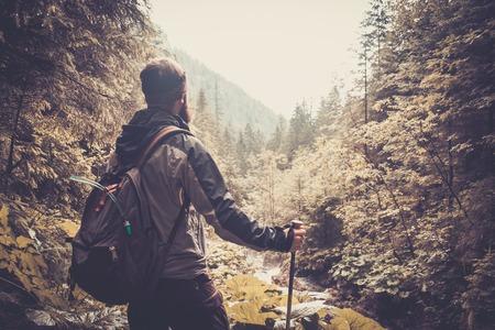ハイキングの装備ムートンの森を歩く男