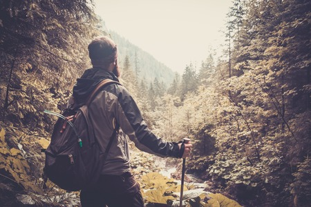 Man with hiking equipment walking in mouton forest Stock Photo - 30807143