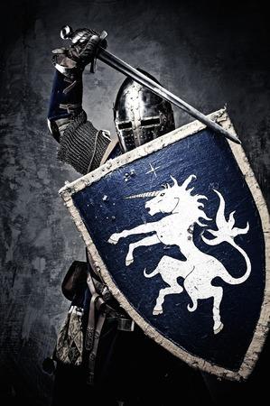 Cavaliere medievale contro il muro di pietra Archivio Fotografico - 31169598