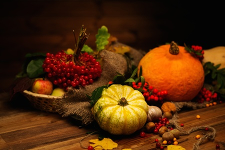 Thanksgiving day autumnal still life Stok Fotoğraf - 44038167