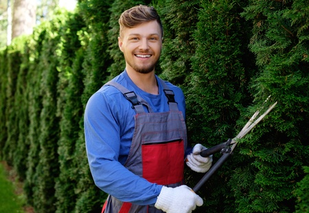 Young gardener cutting trees with clippers Archivio Fotografico