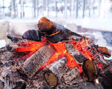 Bonefire in a winter landscape.
