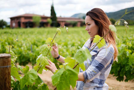 Young woman in vineyard Imagens