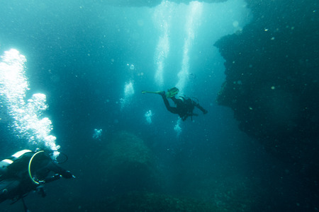 Scuba divers swimming under water