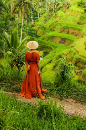 Woman walking on Tegalalang Rice Terrace, Bali Standard-Bild