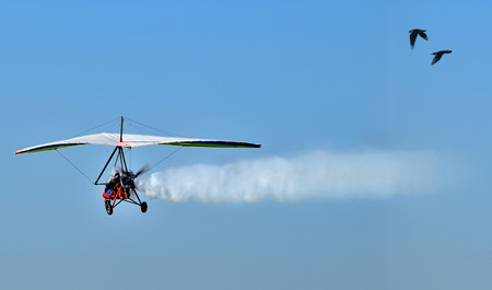 motorized: Motorized Glider with birds escort. Stock Photo