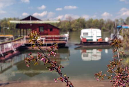 young leave: Spring Bud (Young leave of the branch) with river marina in the background