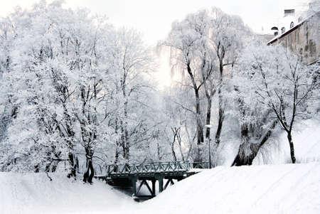 Winter landscape, Shnelli pond and park. Tallinn, Estonia Stock Photo