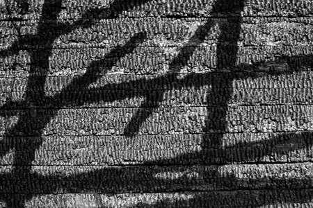 les murs en bois br�l� texture