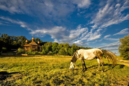 Ukraine. A museum of national architecture and life Pyrohiv