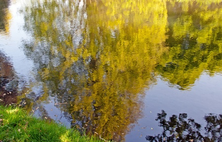 reflections at the water
