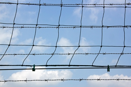 barbed wire: behind the freedom and open spaces photo