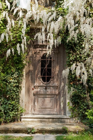 old door at the wisteria Stock Photo