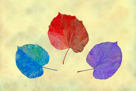 implausible: colors of autumn unlikely