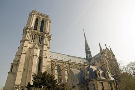 Our Lady of Paris, Notre-Dame de Paris, side view   Paris France