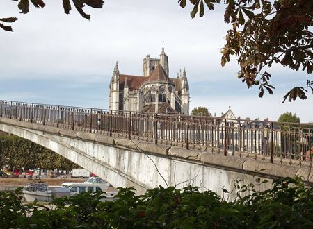 tree works: Cathedral of Auxerre  Burgundy France , seen by a bridge