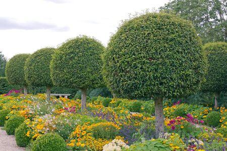 ballad: Formal garden, flowers and box tree cut  France