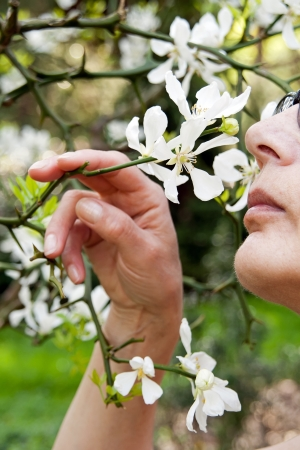 The soft perfume of the spring