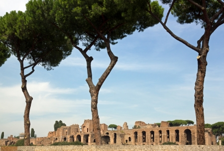 palatine: Ruins of the Palatine Hill, behind a fence, Rome Italy Stock Photo