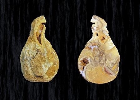 esoterismo: Piedra en forma de pera, fuera interna de un �gata Foto de archivo