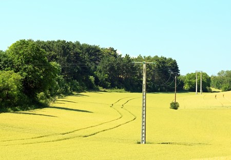 Electric poles in a field, a countryside in Burgundy  France  Stock Photo