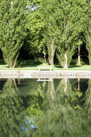 Reflection of the solitude. Isolated bench in a park Stock Photo