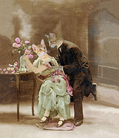 Loving cats in 1900. The declaration of love. Painting, illustration