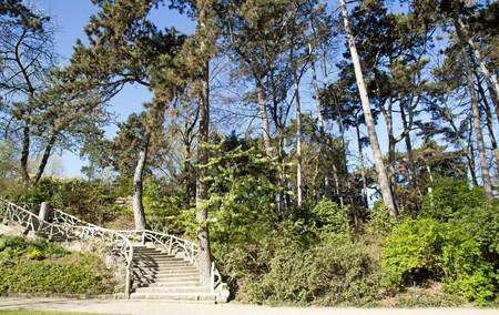 モンスリー公園パリの木の下で階段フランス。