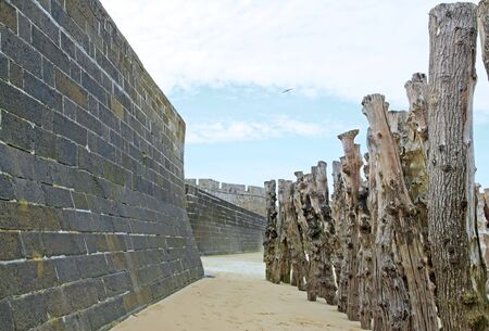 tides: St Malo, the city walls and tree trunks to protect against high tides Brittany France Editorial