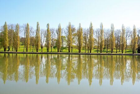 echo: row of poplars, a visual echo of the water.