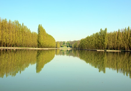 Row of poplars and their reflections in the water. Stock Photo