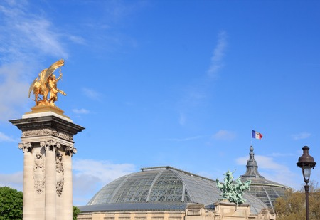 Alexandre III bridge and the roof of the Grand Palais (Paris, France) Stock Photo
