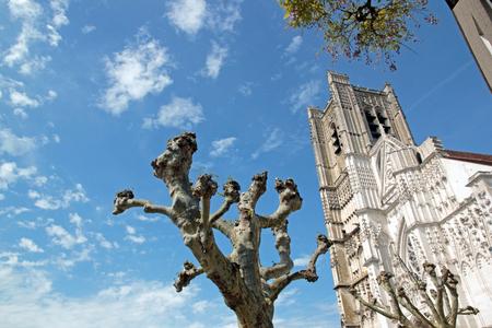 Cathédrale St Etienne d'Auxerre, entre les arbres et les nuages ??(Auxerre, Bourgogne, France)