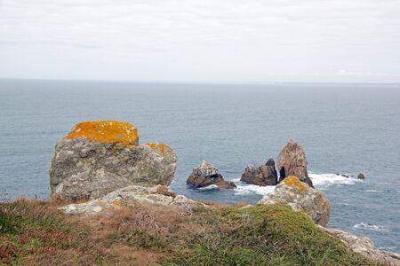 Cap Sizun, roches et lichen (Finistère, Bretagne, France) Banque d'images