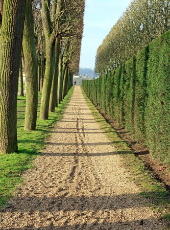 A path marked out. A well-marked future. Stock Photo