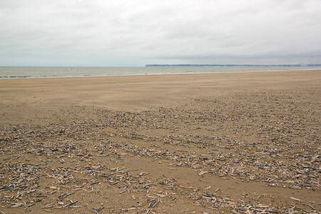 Beach of Trouville during the period of spring tides (Normandy France) Stock Photo