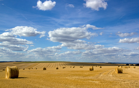 Straw bundles in the plains of the Yonne (Burgundy, France) 写真素材