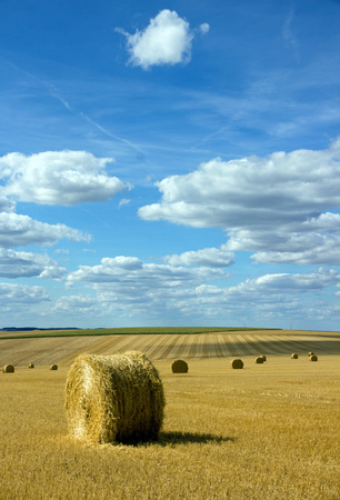 Straw bundles in the plains of the Yonne (Burgundy, France) Фото со стока