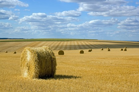 Straw bundles in the plains of the Yonne (Burgundy, France) Stock Photo