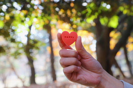 Female hands and heart shaped objects Stock Photo