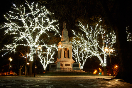 Statue at cambridge common park lit with white christmas lights at night