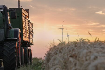 agrar: A Tractor with a trailer passing by a field of wheat with some wind tubines in the background while the sun sets Stock Photo