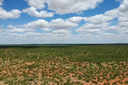 panoramic view of african park with cumulus clouds Stockfoto