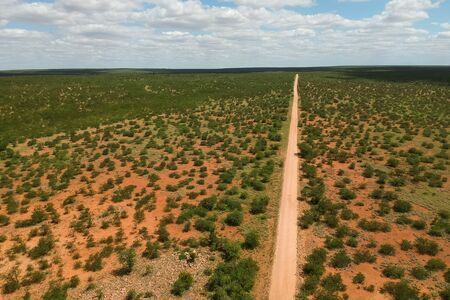 straight long road going through the national Park in south africa Stockfoto