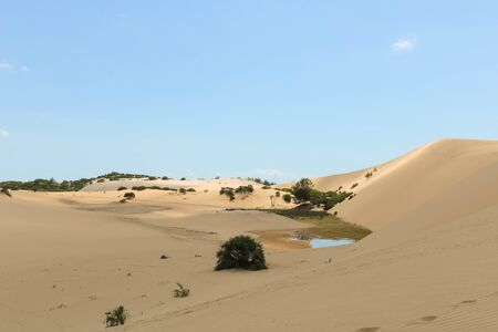 water lake in the desert with few bushes Stockfoto