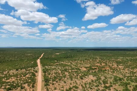 long road going through the national Park in south africa Stockfoto