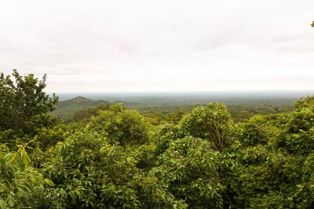 scenic view overlooking the forest in Africa