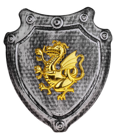 Plastic Shield with gold dragon 스톡 콘텐츠