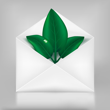 Eco concept. Green leafs in paper envelope. Vector