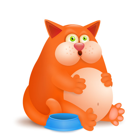 sarcastic: Fat glutton ginger cat with empty bowl on white background. Vector illustration Illustration
